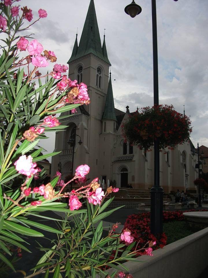 Kaposváron látható Európa legszebb virágos főtere http://kozelestavol.cafeblog.hu/2017/09/23/ebben-a-magyar-varosban-van-europa-legszebb-viragos-fotere/