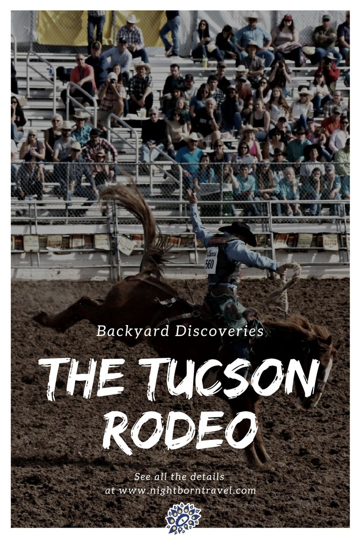 The Tucson Rodeo is a cultural icon in Arizona. It's an annual celebration of ranching culture that runs for 9 whole days and is the largest winter rodeo in the region. Learn about what it is like to attend for locals and travelers alike.