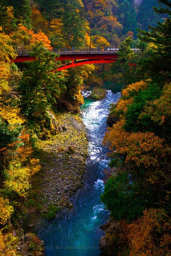 Autumn-Bridge_Okutama_Japan_1024px