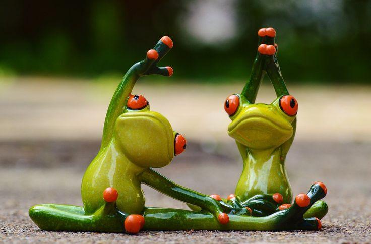 fitness frog making sport