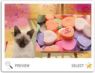 valentines day cat ecard