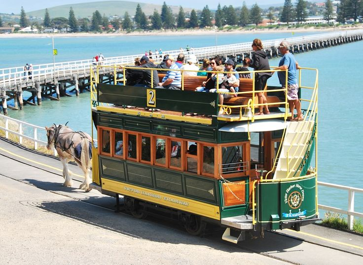 The Horse Drawn Tram – A Nice Life in The Slow Lane..