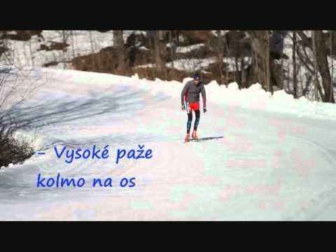 Video - škola běžeckého lyžování: Nácvik bruslení - 1. díl - Škola běžeckého lyžování - BEZKY.net - Běžky, běh na lyžích