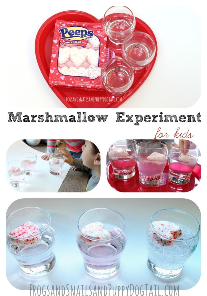 marshmallow experiment In a 20-year follow-up of the marshmallow experiment, individuals with vulnerability to high rejection sensitivity who had shown strong delay of gratification abilities as preschoolers had higher self-esteem and self-worth and more adaptive coping skills.