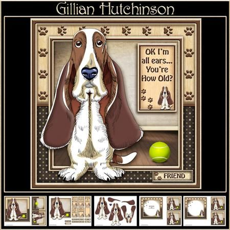 Ok I m All Ears You re How Old  on Craftsuprint designed by Gillian Hutchinson…