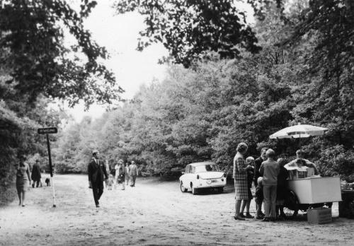 Recreatie in het Spanderswoud, 1966