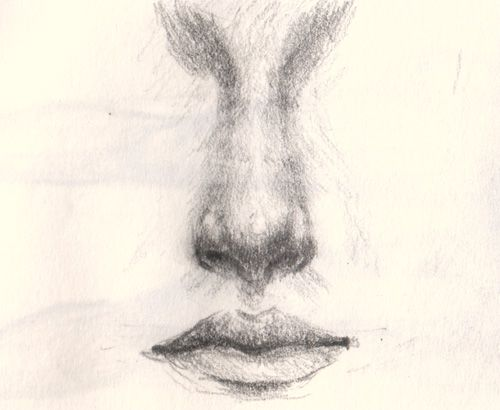 Drawing nose tutorial how to draw a nose