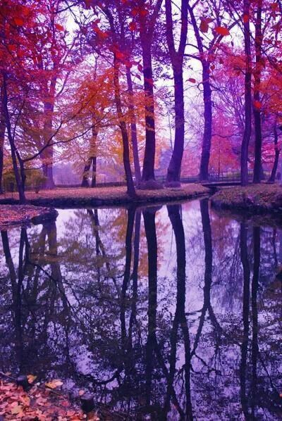 Panoramic Wallpaper Fall Purple Red Pink So Matching Beautiful Landscapes