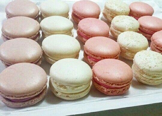 Macarons mora-cioccolato bianco- fragola -cocco - ciliegia