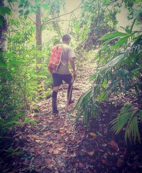 La mejor forma de conocer lo que la naturaleza tiene para nosotros es conociéndola, recorriéndola y experimentando. Siempre agradecidos por tanta abundancia. ~ ~ #frutas #frutasexoticas #fruits #jungle #rainforest #selva #sacha #pachamama #abundancia #coneccion #travel #expiracion #experiencia #viajes #viajar #trip #roadtrip #peru #selvaperuana http://tipsrazzi.com/ipost/1507271204150190338/?code=BTq5yyfjCEC