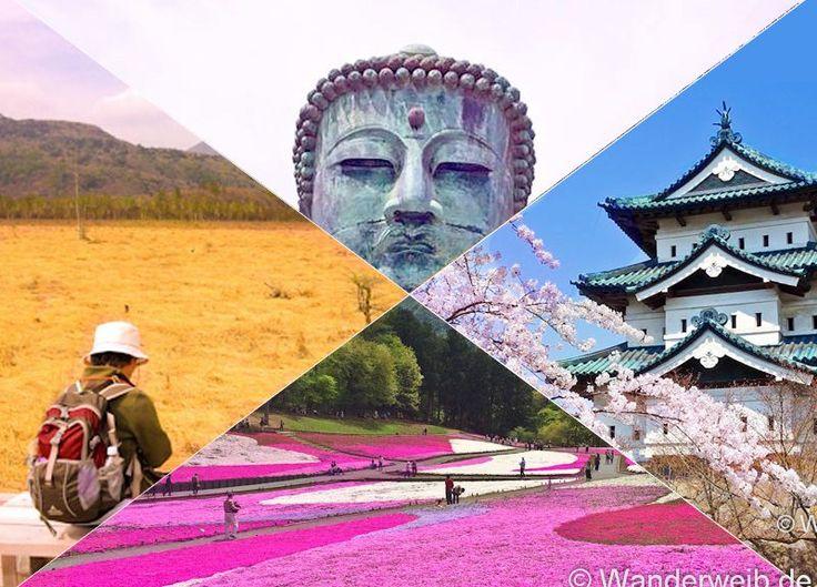 Wann du nach Japan reisen solltest! Jetzt im Blog!   #Japan #Japanreise