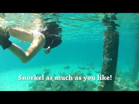 Green Island Cairns - One Day in Paradise - YouTube