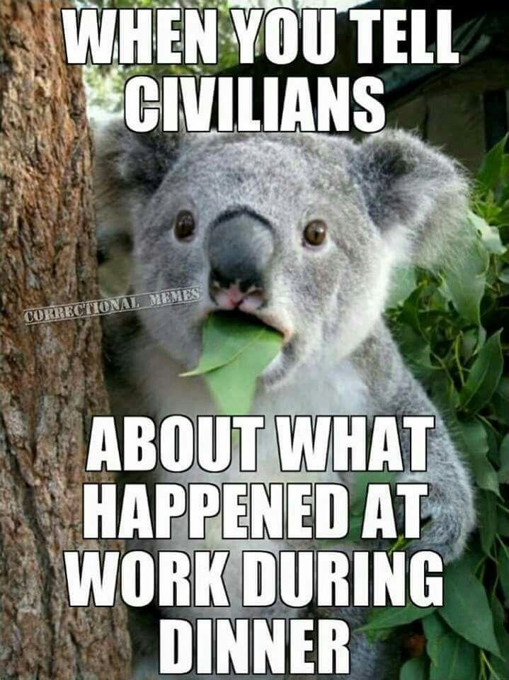 Cop humor                                                                                                                                                     More
