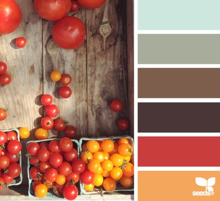 I love neutrals with some some pops of rich color- mustard, poppy red, and moss green are my favorites!