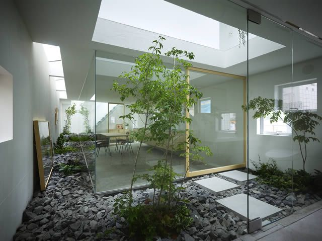 Indoor Landscaping Ideas