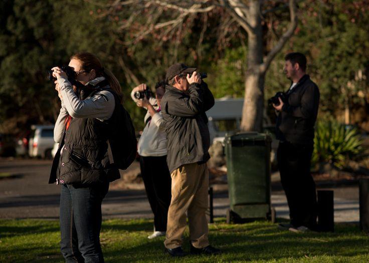 Blog | djb photography school Melbourne, Sydney, Perth, Brisbane, Auckland | Adobe Lightroom workshops | photography walks