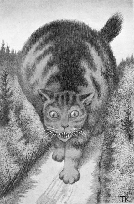 theodor kittelsen - Norwegian artist.  That looks so much like the Julkotturin (Jul Cat) - my  obsession.