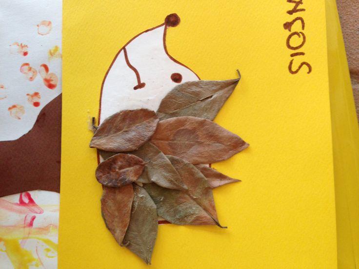Riccio con foglie