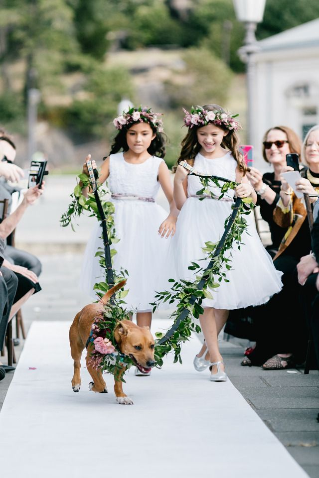 flower girls and dog ring bearer Photo by Emily Wren Photography http://www.weddingchicks.com/blog/a-wedding-made-for-three-but-who-is-the-third-hint-she-has-a-tail-l-14095-l-40.html