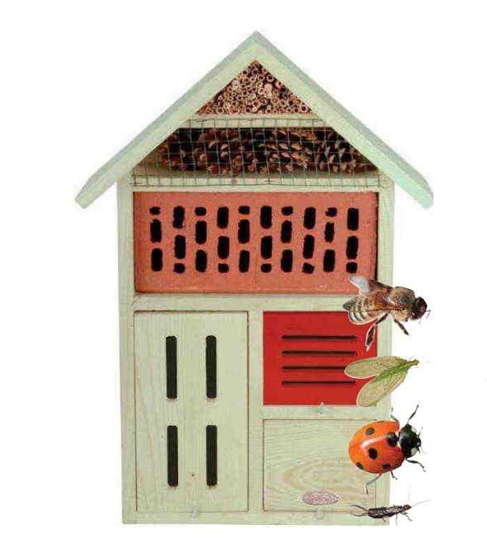 Condominio per insetti