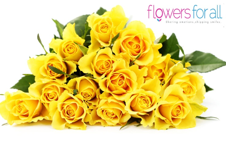 Beautiful yellow roses add life and energy to a home! flowersforall.com