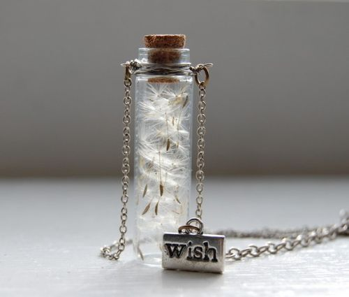 wish: Makeawish, Dreams, Gifts Ideas, Make A Wish, Cute Ideas, Seeds, Dandelions, Jars, Bottle Necklaces