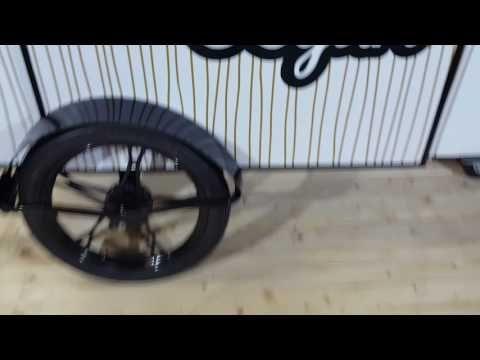 Custom Vending Cart - BizzOnWheels