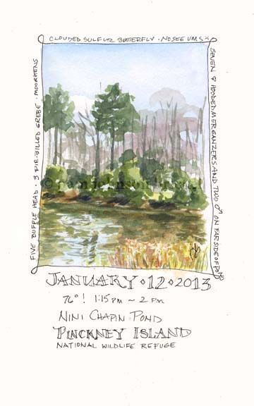 South Carolina Low Country Nature Journaling and Art: Plein Air Nature Journal Page Tutorial