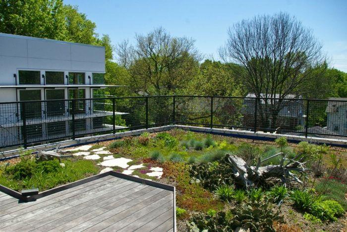 ein kleiner Garten auf der Terrasse, mit einem Pfad, dunkle Terrassendiele, Terrasse bepflanzen