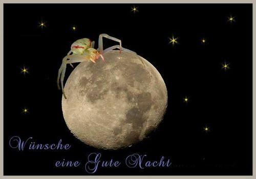 ich wünsche euch noch einen schönen abend und später eine gute nacht  - http://www.1pic4u.com/blog/2014/05/18/ich-wuensche-euch-noch-einen-schoenen-abend-und-spaeter-eine-gute-nacht-70/