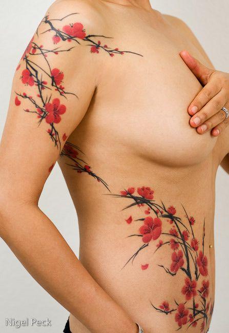 Cherry Blossom Tattoo Designs for Women   Desenhos- Tatuagem Cerejeira / Cherry Blossom TATTOO