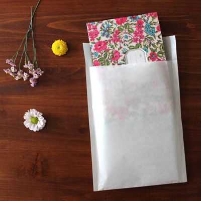translucent envelopes / wrapping paper