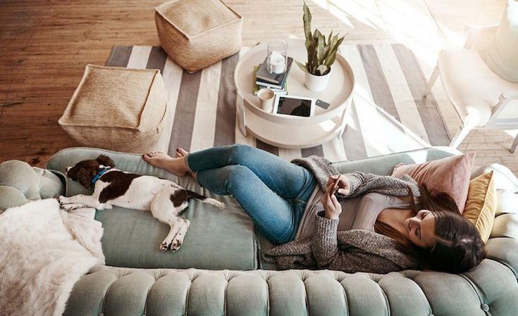 tendance hygge bonheur vivre se prelasser canape chien dormant  #lifestyle