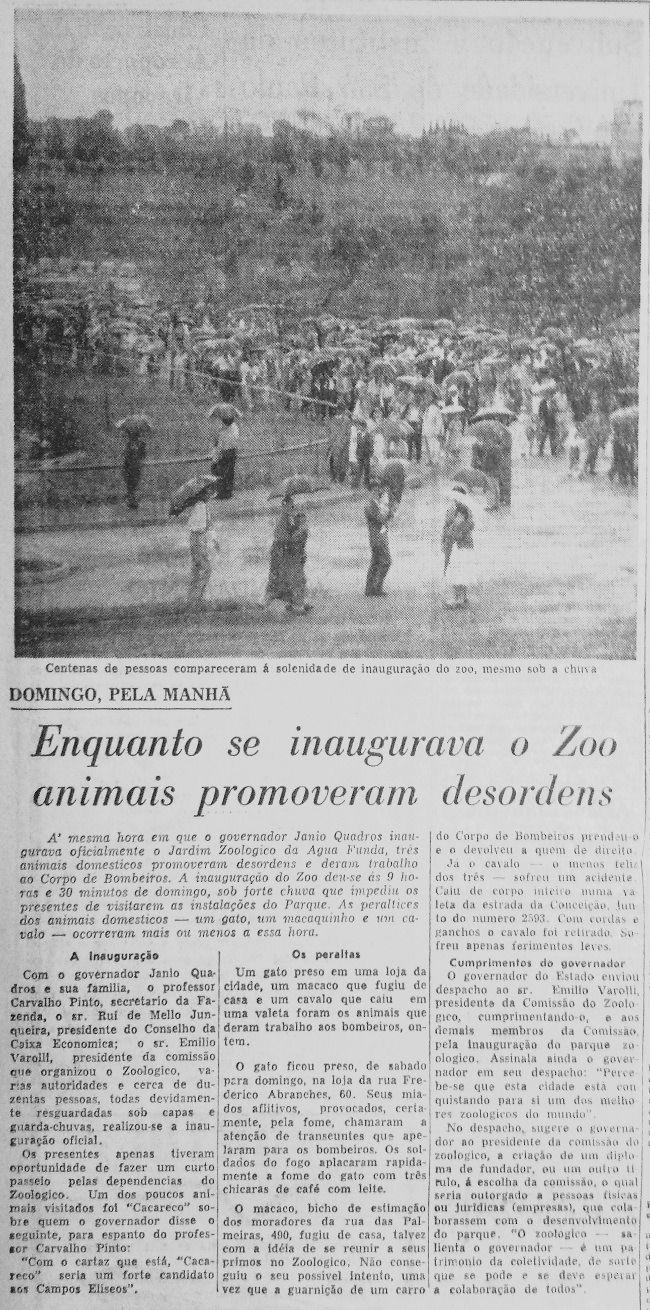 O lançamento da candidatura de Cacareco  Rinoceronte fez sucesso no zoológico paulista e foi o mais votado para vereador em 1959