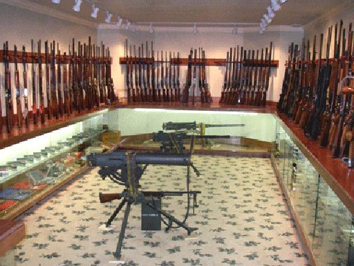 Awesome Basement Gun Vault