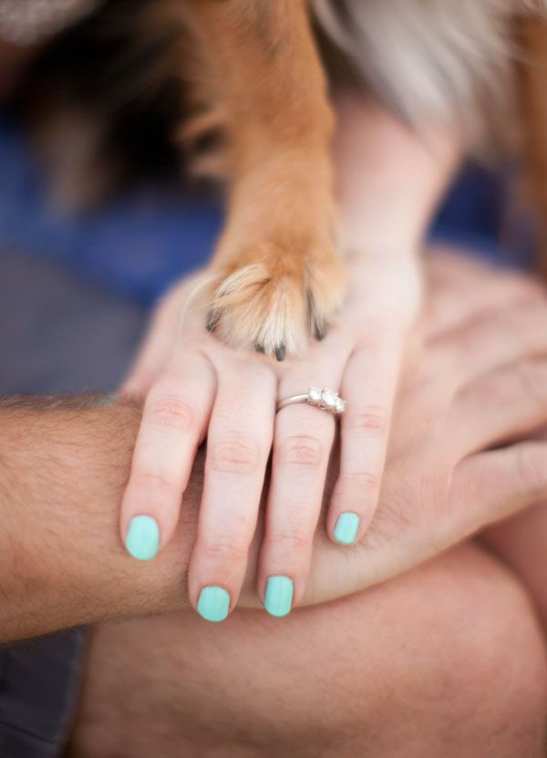 Lucy & Phillip's engagement session with their pet dog, Darcey the Dachshund - by V.A Photography