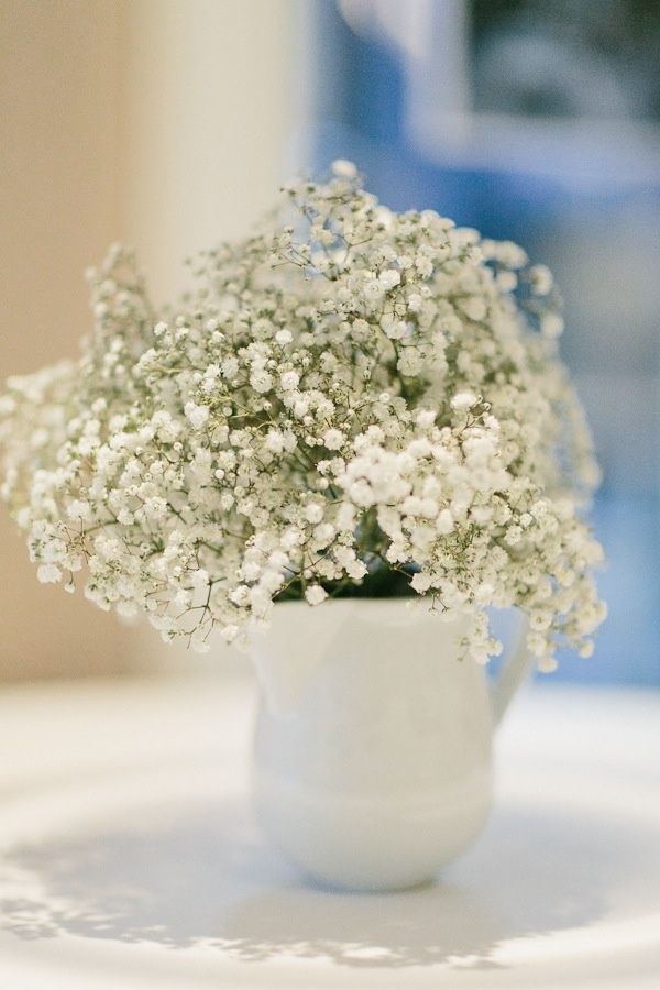 gypsophila, (baby's breath!) The flower symbolism associated with baby's breath is purity of heart, innocence, and the breath of the Holy Spirit. Also the only flower that I am DEFINITELY having, traditional in my family and probably the first flower name I learnt. Even above daisies!