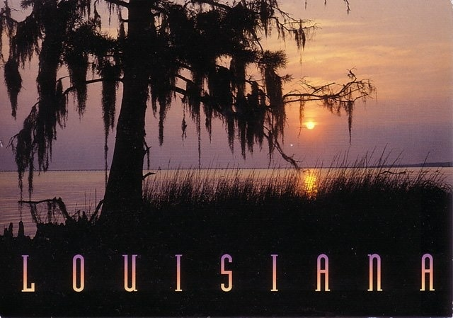 17 Best Images About All Things Louisiana On Pinterest