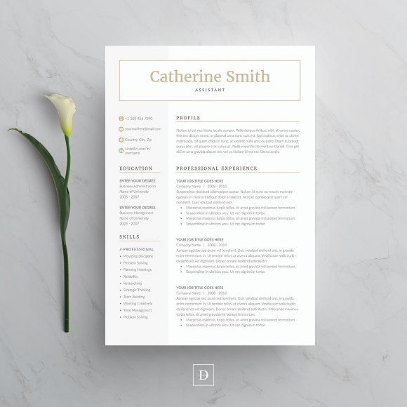 Word Resume & Cover Letter Template by DemeDev on RESUME TEMPLATE CV WORD RESUME TEMPLATE A4 US LETTER CLEAN RESUME