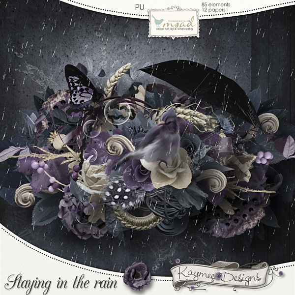 Staying in the rain by Kaymee Designs    http://www.myscrapartdigital.com/shop/index.php?main_page=product_info=24_54_id=899