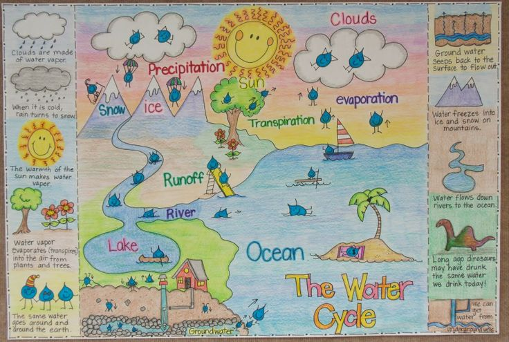 2nd and 1st Grade Smarty-Arties taught by the Groovy Grandma!: Water Cycle and Clouds Anchor Charts.