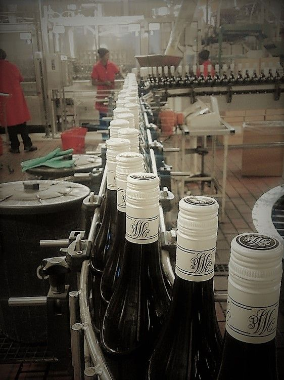 Wine Cellar's bottling plant - near Malmesbury