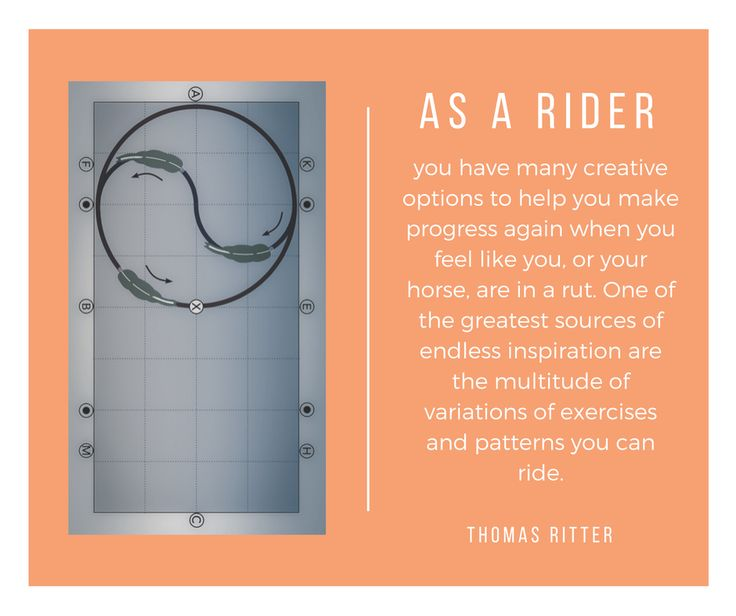 """""""As a rider you have many creative options to help you make progress again when you feel like you, or your horse, are in a rut. One of the greatest sources of endless inspiration are the multitude of variations of exercises and patterns you can ride. """"- Thomas Ritter"""