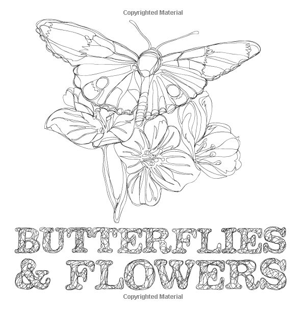 Amazon Butterflies And Flowers Travel Size Expert Level Adult Coloring Book