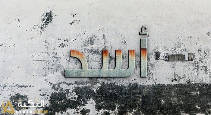 يعتبر اسم أسد من الأسماء المنتشرة في العصور القديمة بين العرب فكان يتم التسمية به نظرا لما يحتوي ف طياته على معنى قيم وجذا Abstract Artwork Abstract Painting