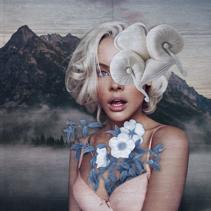 Milan based digital artist Alina Akhmatova also known as 'Fate Troppo Belle', has some gorgeous collages using mostly women, animals and nature to create these intriguing collages
