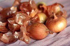 Casca de cebola - um tesouro para jardineiros