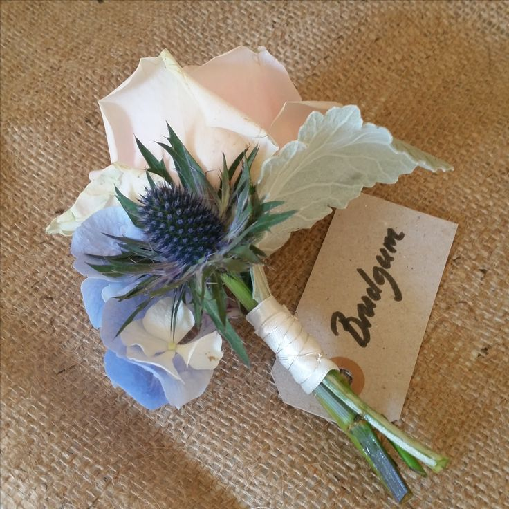 Corsage for the groom - a pink Austin rose in contrast with Eryngium.