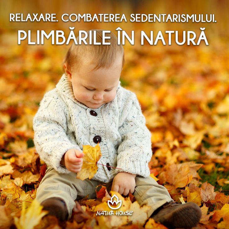 Plimbările în mijlocul naturii întăresc sistemul imunitar și reprezintă cea mai simplă metodă pentru a combate sedentarismul. Așadar, este important ca și copiii să fie încurajați să petreacă mai mult timp în aer liber. O astfel de ieșire poate fi un moment binevenit de relaxare pentru întreaga familie. Mai multe sfaturi pentru un stil de viață sănătos pe www.natur-house.ro