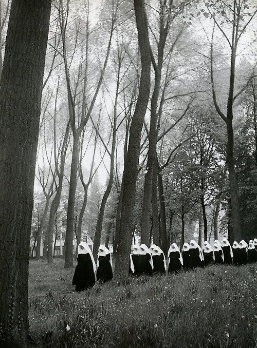 iamfawn: whisperingwillow: alongline: reblololo: liquidnight: Willy Ronis - Brügge, 1951